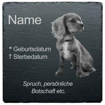 Haustier Grabplatte Hund mit eigenem Bild 20x20 cm
