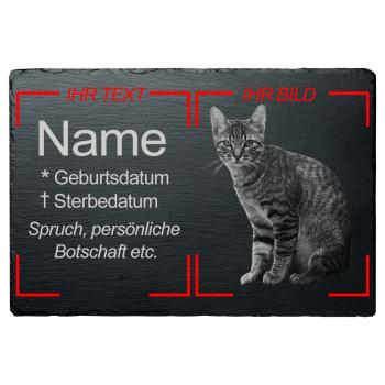 Haustier Grabplatte Katze mit eigenem Bild 20x30 cm