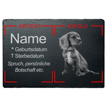 Haustier Grabplatte Hund mit eigenem Bild 20x30 cm